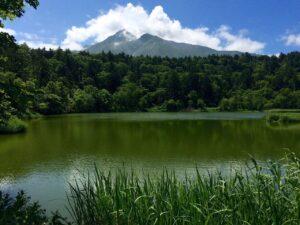 姫沼からの利尻富士